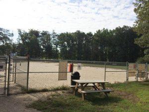 PWLiving-Relax-Dog-Training-Prince-William-County-Dog-Park-2