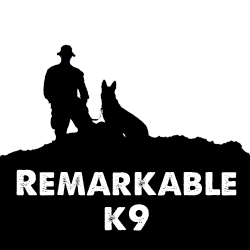 remarkable-k9-web-ad-copy