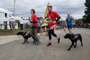 USMC veterans Christopher Baity, Semper K9 founder and Executive Director, and Jessica Rambo finish their first marathons with service dogs Bella and Bree.