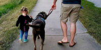 Family Integration Program Semper K9