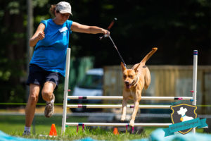 Semper K9 Obedience Olympiad Image
