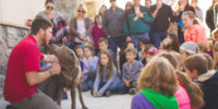 Community Education Program About Service Dogs for Veterans with Semper K9